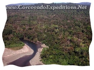 Corcovado National Park Picture